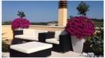 Annuncio vendita Coriano meraviglioso attico panoramico