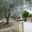 foto 9 - Ginosa tenuta a Taranto in Vendita