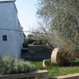 foto 7 - Ginosa tenuta a Taranto in Vendita