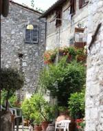 Annuncio vendita Lucca rustico con terreno