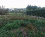 Annuncio vendita Terreno edificabile in località Pianette