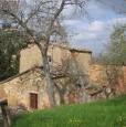 foto 5 - Montepulciano rustico in collina a Siena in Vendita