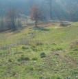 foto 4 - Arpino terreno panoramico a Frosinone in Vendita