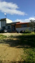 Annuncio vendita Palermo terreno coltivato a uliveti con casa