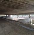 foto 16 - Amelia antica azienda agricola a Terni in Vendita