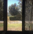 foto 12 - Amelia antica azienda agricola a Terni in Vendita