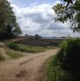 foto 6 - Amelia antica azienda agricola a Terni in Vendita