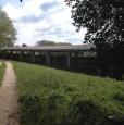 foto 5 - Amelia antica azienda agricola a Terni in Vendita