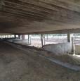 foto 7 - Amelia terreno agricolo con capannone a Terni in Vendita