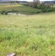 foto 5 - Amelia terreno agricolo con capannone a Terni in Vendita