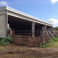 foto 4 - Amelia terreno agricolo con capannone a Terni in Vendita