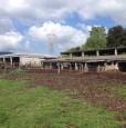 foto 0 - Amelia terreno agricolo con capannone a Terni in Vendita