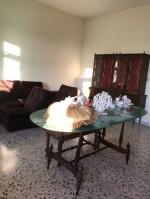 Annuncio vendita Brindisi zona Sant'Elia appartamento