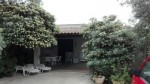 Annuncio affitto Siracusa villetta con giardino vicino al mare