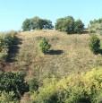 foto 0 - Montesilvano Colle località Trave terreno agricolo a Pescara in Vendita