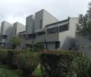 Annuncio vendita San Vincenzo appartamento immerso nel verde