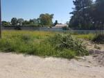 Annuncio vendita Mondragone terreno agricolo