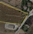 foto 11 - Lotto di terra in località Torre Santa Susanna a Brindisi in Vendita