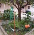 foto 0 - Pirri casa con cortile e giardino a Cagliari in Vendita