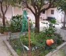 Annuncio vendita Pirri casa con cortile e giardino