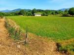Annuncio vendita Lucca fabbricato da ristrutturare con terreno