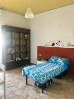 Annuncio affitto Firenze camera singola in appartamento