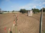 Annuncio vendita Latiano terreno con rustico