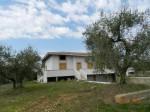 Annuncio vendita Montelibretti villa bifamiliare