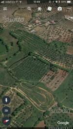 Annuncio vendita Terreno edificabilesito in Spezzano Albanese