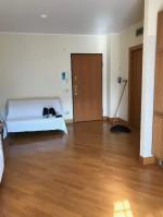 Annuncio vendita Roma Monte Mario appartamento