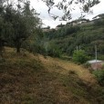 foto 4 - Grottaferrata lotto di terreno a Roma in Vendita