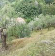 foto 3 - Grottaferrata lotto di terreno a Roma in Vendita