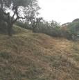 foto 1 - Grottaferrata lotto di terreno a Roma in Vendita