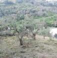 foto 0 - Grottaferrata lotto di terreno a Roma in Vendita