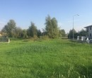 Annuncio vendita Gruaro terreno edificabile zona residenziale