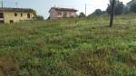 Annuncio vendita Terreno edificabile a San Polo D'Enza