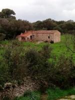 Annuncio vendita Arzachena casa colonica gallurese