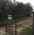 foto 7 - Monsummano Terme terratetto a Pistoia in Vendita
