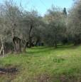 foto 0 - Firenze terreno agricolo zona collinare di Careggi a Firenze in Vendita