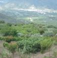 foto 5 - Calatabiano terreno agricolo a Catania in Vendita