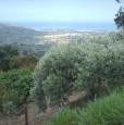 foto 4 - Calatabiano terreno agricolo a Catania in Vendita