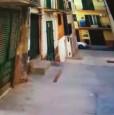 foto 12 - Monreale loft arredato a Palermo in Vendita