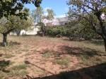 Annuncio vendita Calimera suolo edificabile