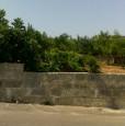 foto 3 - Corigliano d'Otranto terreno edificabile a Lecce in Vendita