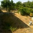 foto 1 - Corigliano d'Otranto terreno edificabile a Lecce in Vendita