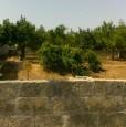 foto 0 - Corigliano d'Otranto terreno edificabile a Lecce in Vendita