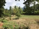 Annuncio vendita Ceccano Frosinone terreno per impianti sportivi