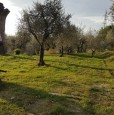 foto 12 - Bientina casale nel verde della Toscana a Pisa in Vendita