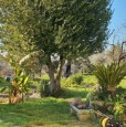 foto 10 - Bientina casale nel verde della Toscana a Pisa in Vendita