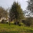 foto 8 - Bientina casale nel verde della Toscana a Pisa in Vendita